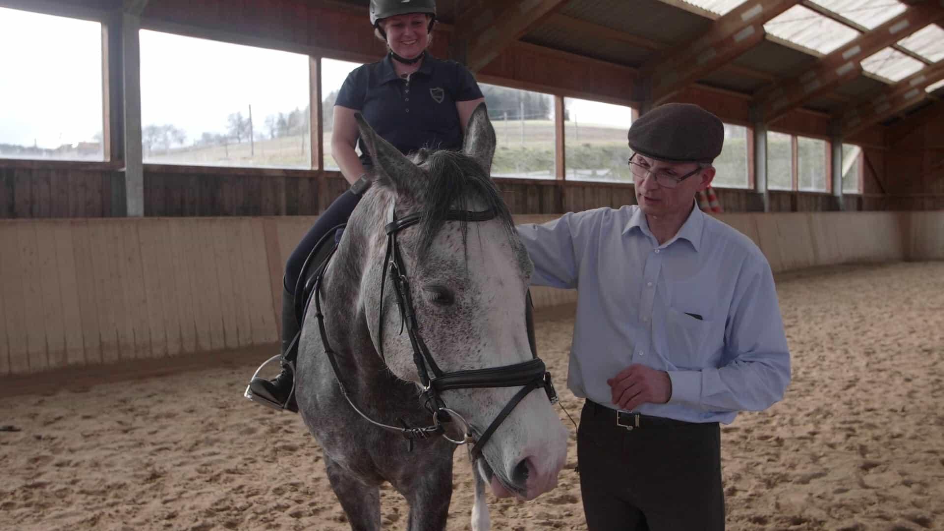 Reitunterricht und Pferdetraining