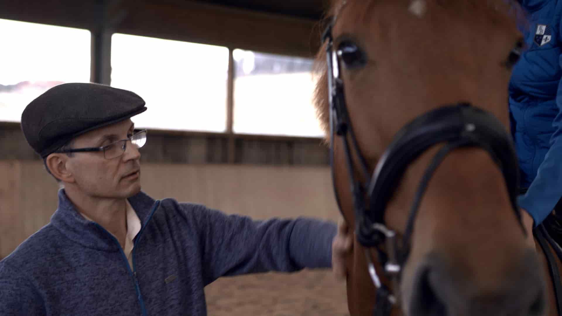 Spezialangebote mit Pferden
