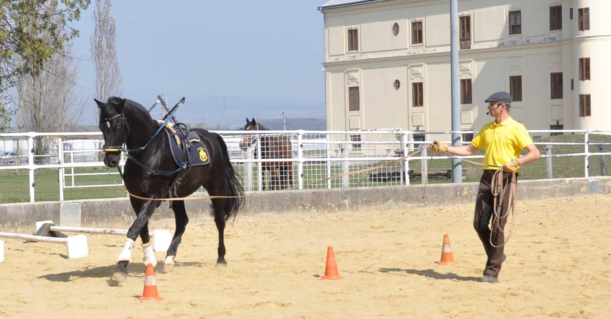 Alexander Kronsteiner Pferd longieren vor Schloss Hubertendorf